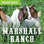 Marshall Ranch