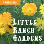 Little Ranch Gardens